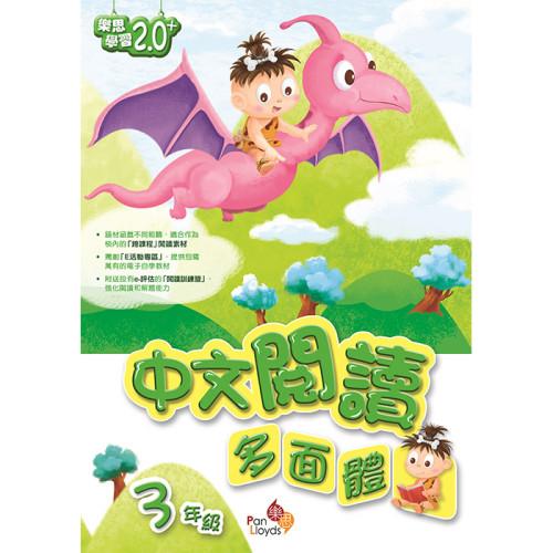 中文閱讀多面體 (3)